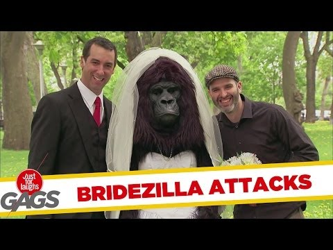 Bridezilla? No, just Gorilla Bride - Just For Laughs Gags