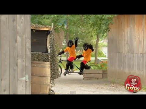 Just For Laughs - Biking Gorilla Boys