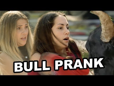 Raging BULL Wants Caffeine Prank