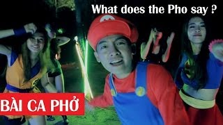 BÀI CA PHỞ: What does the Pho say ?